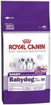 Royal Canin Giant Babydog 30